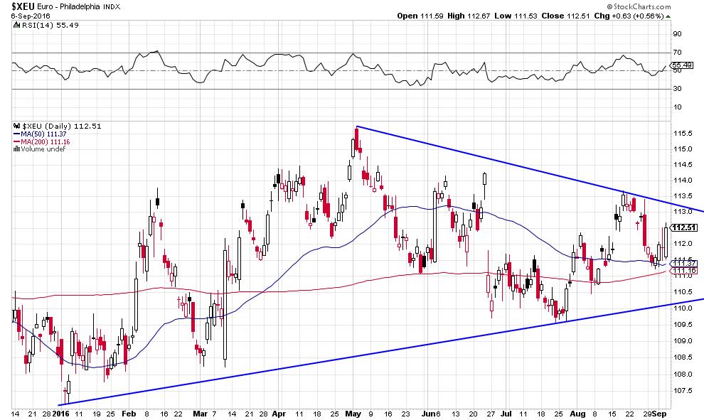 euro dollar pl